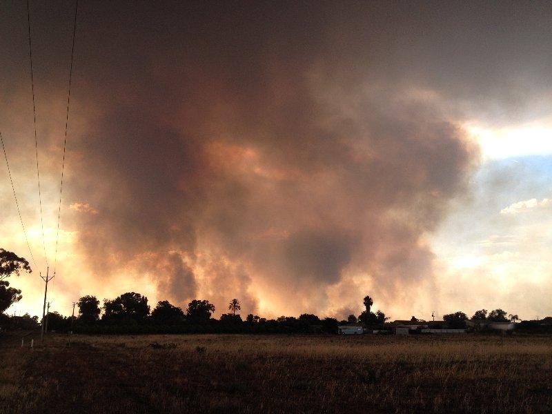 Bushfire closeby